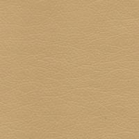 zeus dark beige 003