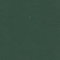 zeus green 226