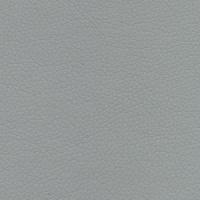 zeus grey 071